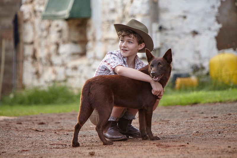 Levi-Miller-and-Dog-02-Day-16