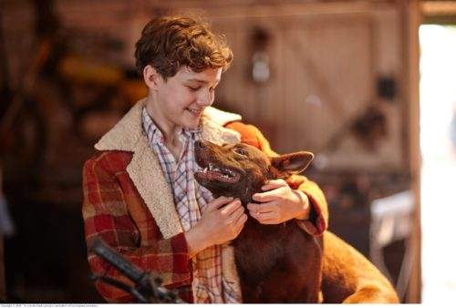 Levi Miller and Dog - Day 18_SML