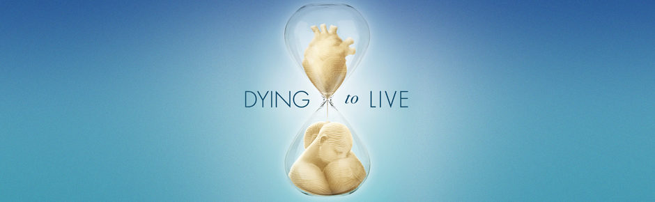 Sbs On Demand Not Working | DYING TO LIVE Free-To-Air