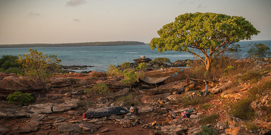A rocky campsite with a big tree and the ocean in the background.