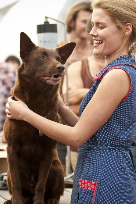 Rachael Taylor patting Koko the dog in 'Red Dog'