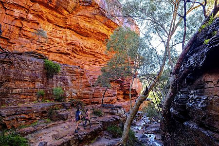 River cutting through a red rock gorge