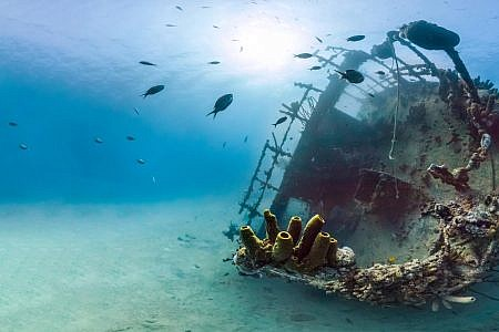 Photo of a shipwreck on the ocean floor